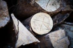 Skördad wood near chalet, Kanada arkivbild