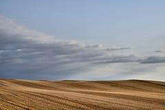 Skördade prärier för kanadensare för kornfält royaltyfri bild