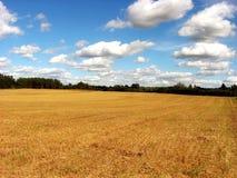 skördat fält Arkivfoton