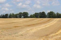 skördat fält Arkivfoto