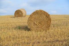 Skördat fält med sugrörbaler i höst Royaltyfri Fotografi