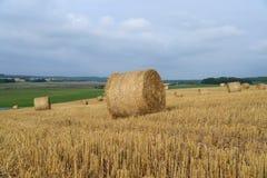 Skördat fält med sugrörbaler i höst Arkivbild