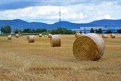 Skördat sugrörfält med runda torra höbaler framme av bergskedja royaltyfri bild