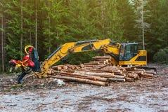 Skördearbetare för snickerimaskintraktor i det primära trät för skog som bearbetar som beskär filialer deforestation royaltyfria foton