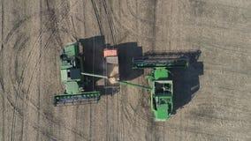 Skördearbetare häller nytt sojabönan till släpet för transport, jordbruks- fält för surrsikt stock video