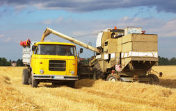 Skördearbetaremaskin och lastbil, lastbil på skörden Arkivfoton
