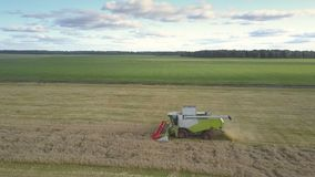 Skördearbetaren för den gräsplan för den flyg- sikten vit och samlar vete på fält lager videofilmer