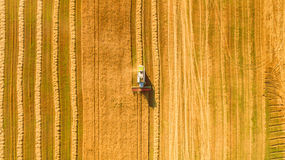 Skördearbetaren som arbetar i fält och, mejar vete ukraine flyg- sikt royaltyfri fotografi