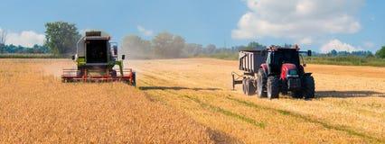 Skördearbetaresammanslutning och traktorplockningvete på solig sommar D arkivfoto