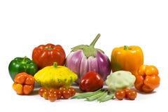 Skörden av naturliga grönsaker producerade i landsbygder royaltyfria foton