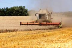 Skördetröska som arbetar på det guld- fältet i en lantlig landsca Arkivfoton