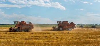 Skördetröskan tar bort vetefält fotografering för bildbyråer