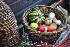 skördgrönsaker arkivfoto
