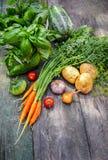 Skördgrönsaker med örter och kryddor arkivbilder