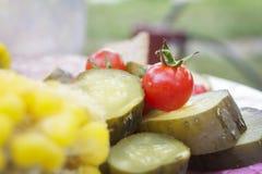 Skördmellanmål med nya grönsaker Royaltyfri Bild
