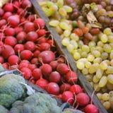 Skördrädisa, kål och druvor arkivfoton