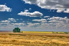 Skördtekniker harvester Jordbruksmark och att slutta fält på en ljus och solig dag i sommar royaltyfria bilder