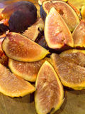 SkördTid fikonträd Arkivfoto