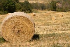Skördtid: jordbruks- landskap med höbaler Royaltyfria Bilder