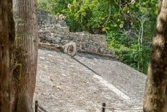 Sköt av den modiga cirkeln för pelotan, i det Mayan fördärvar av det arkeologiska området av Coba arkivbilder