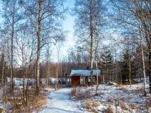 Skąpanie w zimy drewnie fotografia royalty free