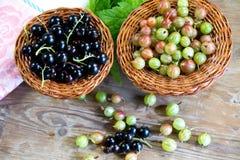 Skład świeże jagody czarny rodzynek agrest na drewnianych powierzchniach i, Obrazy Royalty Free