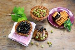 Skład świeże jagody czarny rodzynek agrest na drewnianych powierzchniach i, Obraz Stock