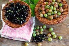 Skład świeże jagody czarny rodzynek agrest na drewnianych powierzchniach i, Zdjęcie Stock