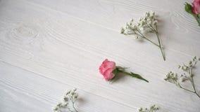 Skład bielu i menchii kwiatów wieśniaka styl dla St walentynki ` s dnia z miejscem dla twój teksta, Mieszkanie nieatutowy, wierzc zbiory wideo
