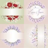 Skład delikatni dzicy kwiaty na beżowym tle z przestrzenią dla twój teksta Karta Obraz Royalty Free