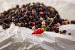 Skład i czerwony chłodny na białego papieru tle czarni, czerwoni i biali peppercorns, płytka głębia pole obraz royalty free