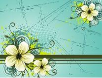 skład kwiat ilustracji