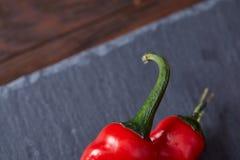 Skład pomidorowa wiązka i gorący pieprz na czarnym kawałku deska, odgórny widok, zakończenie Fotografia Stock