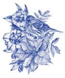 Skład różni kwiaty, ptaki i rośliny rysujący ręką, Fotografia Royalty Free