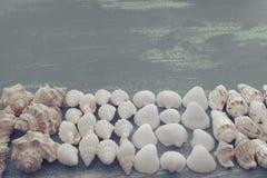 Skład set skorupa kamieni otoczaków jeża tła kopii gwiazdowe drewniane stare szarość będąca ubranym przestrzeń Zdjęcie Stock