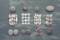 Skład set skorupa kamieni otoczaków jeża tła kopii gwiazdowe drewniane stare szarość będąca ubranym przestrzeń Fotografia Royalty Free