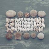 Skład set skorupa kamieni otoczaków jeża tła kopii gwiazdowe drewniane stare szarość będąca ubranym przestrzeń Obrazy Royalty Free