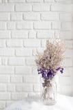 Skład wysuszeni kwiaty na biel ściany cegle w tle Obraz Royalty Free