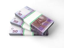Skład z banknotami ukraiński pieniądze Zdjęcie Stock