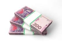 Skład z banknotami ukraiński pieniądze Obraz Royalty Free