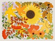 Skład z kwiatami, liśćmi i roślinami jesieni, Zdjęcie Stock