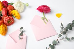 Skład z pięknymi ranunculus kwiatami, kopertami i obraz stock