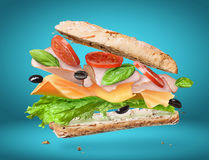 składnik lotnicza wyśmienicie kanapka obraz stock