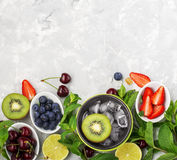 Składnik zdrowej diety rodzinni posiłki: świeże soczyste owoc i jagody z mennicą i lodem przygotowywać zdrowego lato obrazy royalty free