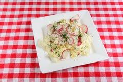 składniki żywności kulinarni włoskich Sałatka kapusta i rzodkiew Zdjęcia Stock