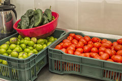 Składniki dla Gorącego salsa Fotografia Stock