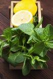 Składniki dla lemoniady - cytryna, mennica w drewnianym pudełku Obrazy Royalty Free