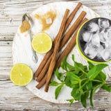 Składniki dla odświeżającego lata witaminy zdrowych napojów: wapno, mennica, jagody, owoc, lód, brown cukier, cynamonowi kije Zdjęcie Stock