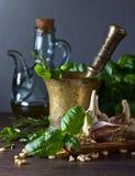 Składniki dla robić pesto na drewnianym stole Fotografia Stock