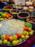 Składniki dla Som tama lub Som tum melonowa Tajlandzkiej sałatki Zdjęcie Stock